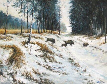 В лесах Беларуси