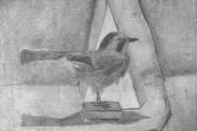 Рисунок «Птица»